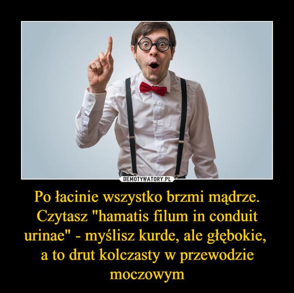 """Po łacinie wszystko brzmi mądrze. Czytasz """"hamatis filum in conduit urinae"""" - myślisz kurde, ale głębokie, a to drut kolczasty w przewodzie moczowym –"""