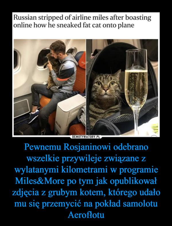Pewnemu Rosjaninowi odebrano wszelkie przywileje związane z wylatanymi kilometrami w programie Miles&More po tym jak opublikował zdjęcia z grubym kotem, którego udało mu się przemycić na pokład samolotu Aerofłotu –