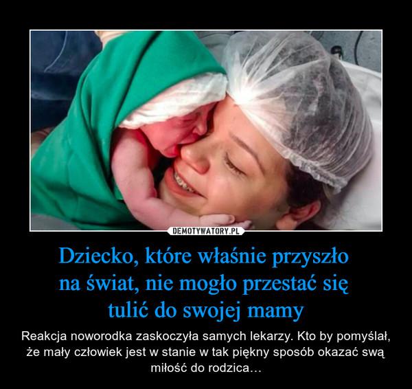 Dziecko, które właśnie przyszło na świat, nie mogło przestać się tulić do swojej mamy – Reakcja noworodka zaskoczyła samych lekarzy. Kto by pomyślał, że mały człowiek jest w stanie w tak piękny sposób okazać swą miłość do rodzica…