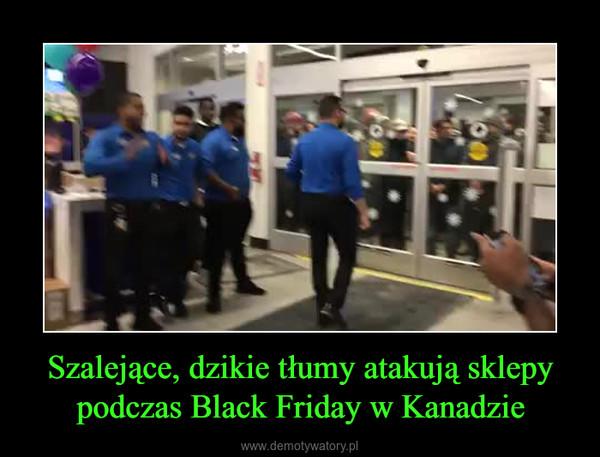Szalejące, dzikie tłumy atakują sklepy podczas Black Friday w Kanadzie –