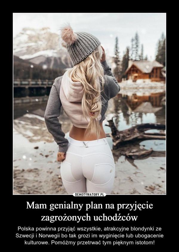 Mam genialny plan na przyjęcie zagrożonych uchodźców – Polska powinna przyjąć wszystkie, atrakcyjne blondynki ze Szwecji i Norwegii bo tak grozi im wyginięcie lub ubogacenie kulturowe. Pomóżmy przetrwać tym pięknym istotom!