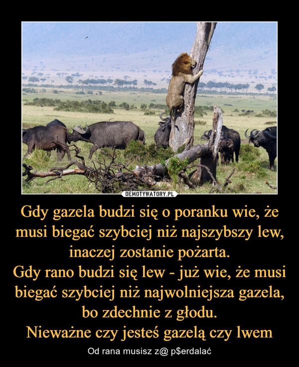 Gdy gazela budzi się o poranku wie, że musi biegać szybciej niż najszybszy lew, inaczej zostanie pożarta.Gdy rano budzi się lew - już wie, że musi biegać szybciej niż najwolniejsza gazela, bo zdechnie z głodu.Nieważne czy jesteś gazelą czy lwem – Od rana musisz z@ p$erdalać