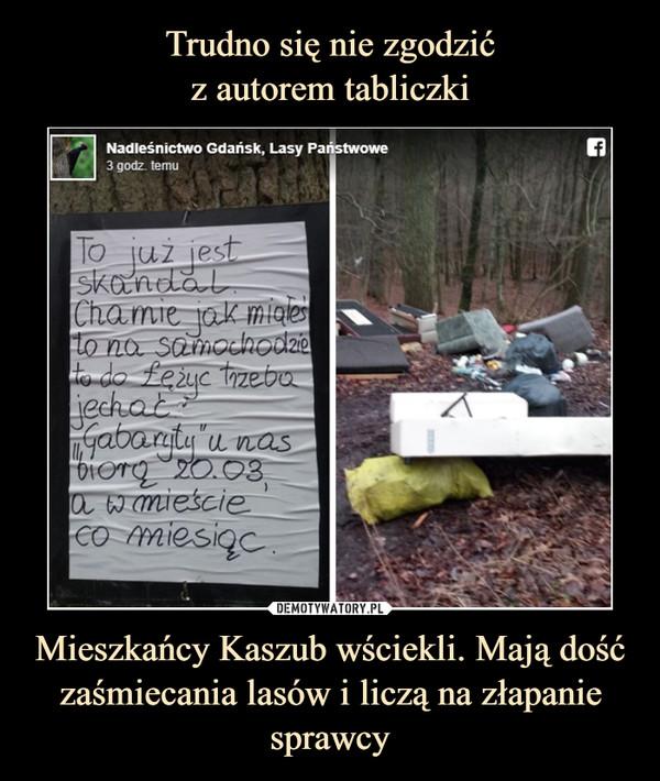 Mieszkańcy Kaszub wściekli. Mają dość zaśmiecania lasów i liczą na złapanie sprawcy –