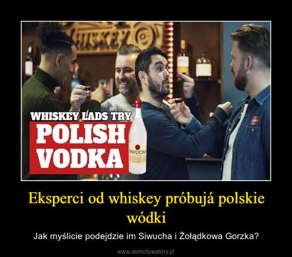 Eksperci od whiskey próbujá polskie wódki – Jak myślicie podejdzie im Siwucha i Żołądkowa Gorzka?