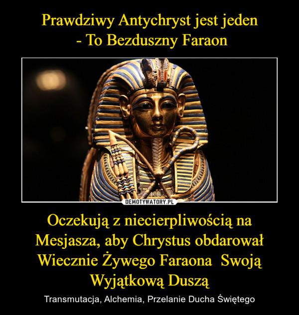 Oczekują z niecierpliwością na Mesjasza, aby Chrystus obdarował Wiecznie Żywego Faraona  Swoją Wyjątkową Duszą – Transmutacja, Alchemia, Przelanie Ducha Świętego
