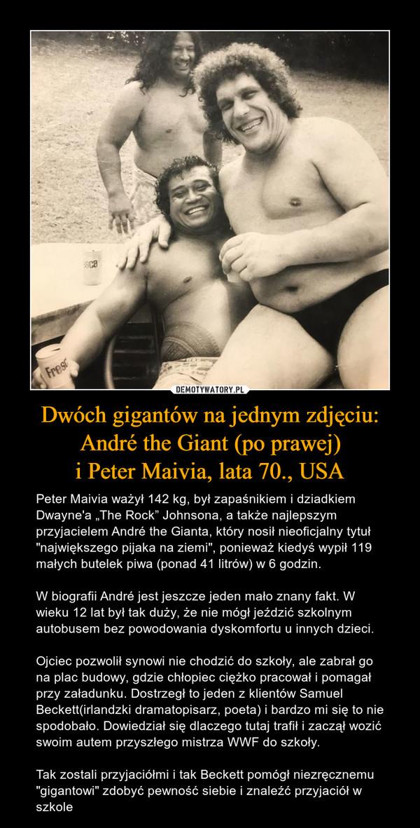"""Dwóch gigantów na jednym zdjęciu:André the Giant (po prawej)i Peter Maivia, lata 70., USA – Peter Maivia ważył 142 kg, był zapaśnikiem i dziadkiem Dwayne'a """"The Rock"""" Johnsona, a także najlepszym przyjacielem André the Gianta, który nosił nieoficjalny tytuł """"największego pijaka na ziemi"""", ponieważ kiedyś wypił 119 małych butelek piwa (ponad 41 litrów) w 6 godzin.W biografii André jest jeszcze jeden mało znany fakt. W wieku 12 lat był tak duży, że nie mógł jeździć szkolnym autobusem bez powodowania dyskomfortu u innych dzieci. Ojciec pozwolił synowi nie chodzić do szkoły, ale zabrał go na plac budowy, gdzie chłopiec ciężko pracował i pomagał przy załadunku. Dostrzegł to jeden z klientów Samuel Beckett(irlandzki dramatopisarz, poeta) i bardzo mi się to nie spodobało. Dowiedział się dlaczego tutaj trafił i zaczął wozić swoim autem przyszłego mistrza WWF do szkoły.Tak zostali przyjaciółmi i tak Beckett pomógł niezręcznemu """"gigantowi"""" zdobyć pewność siebie i znaleźć przyjaciół w szkole"""