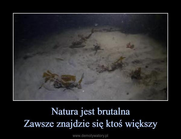 Natura jest brutalnaZawsze znajdzie się ktoś większy –