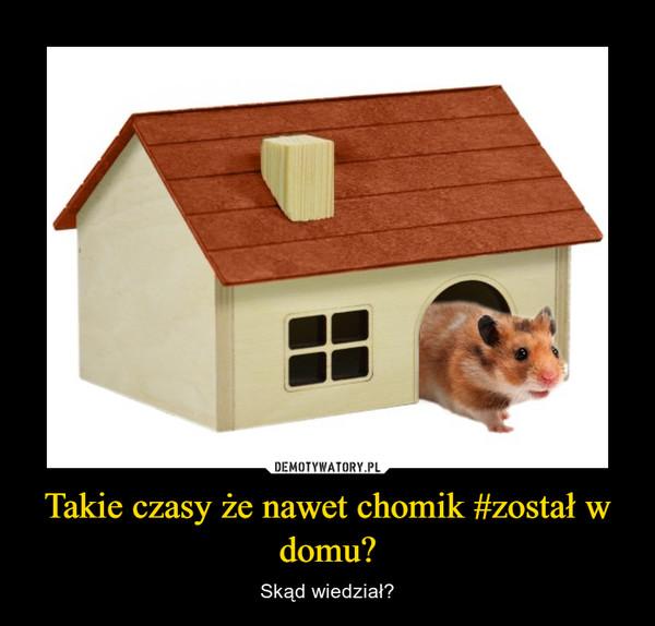 Takie czasy że nawet chomik #został w domu? – Skąd wiedział?