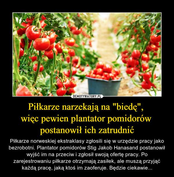 """Piłkarze narzekają na """"biedę"""", więc pewien plantator pomidorów postanowił ich zatrudnić – Piłkarze norweskiej ekstraklasy zgłosili się w urzędzie pracy jako bezrobotni. Plantator pomidorów Stig Jakob Hanasand postanowił wyjść im na przeciw i zgłosił swoją ofertę pracy. Po zarejestrowaniu piłkarze otrzymają zasiłek, ale muszą przyjąć każdą pracę, jaką ktoś im zaoferuje. Będzie ciekawie..."""