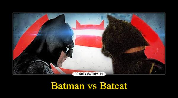 Batman vs Batcat –