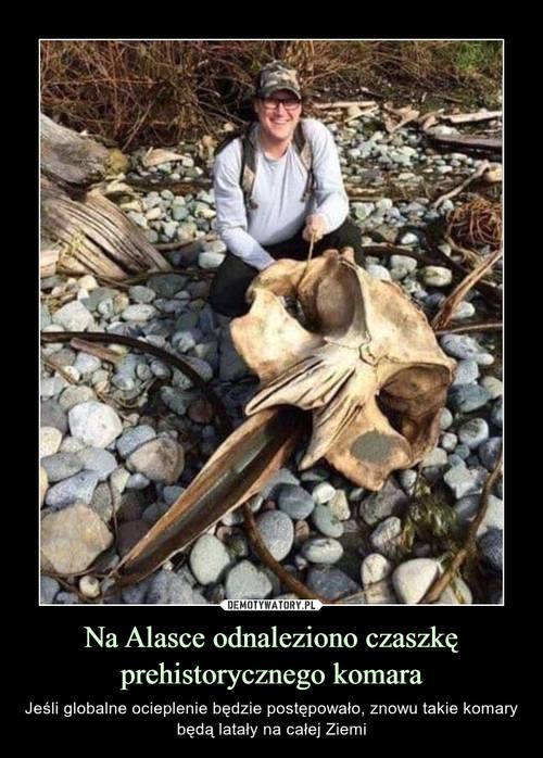 Na Alasce odnaleziono czaszkę prehistorycznego komara