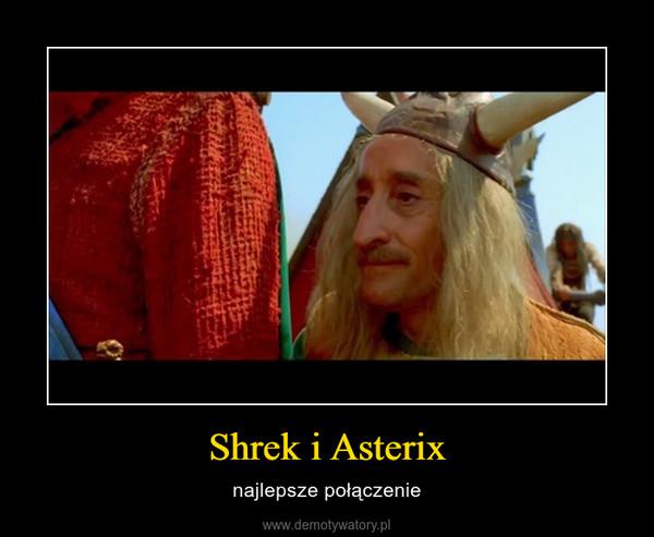 Shrek i Asterix – najlepsze połączenie