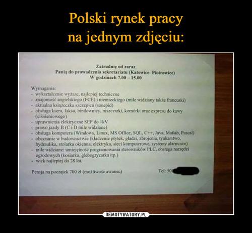 Polski rynek pracy na jednym zdjęciu: