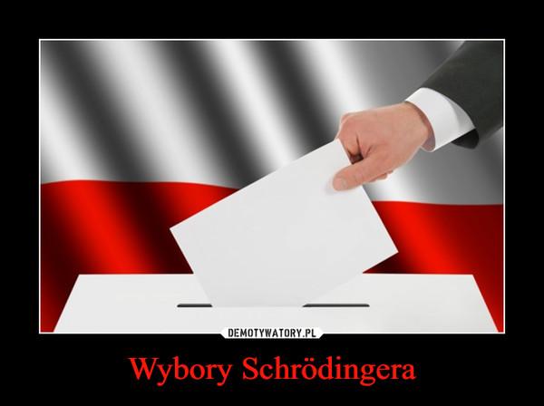 Wybory Schrödingera –