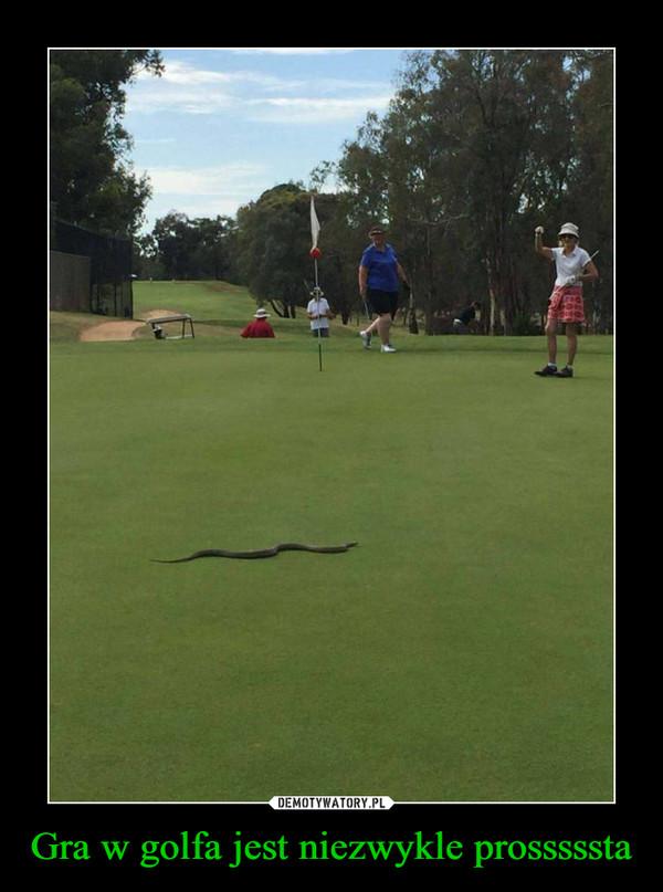 Gra w golfa jest niezwykle prosssssta –