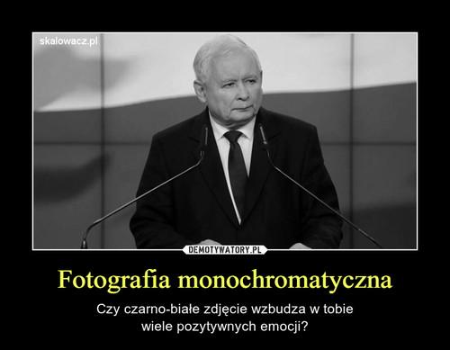 Fotografia monochromatyczna