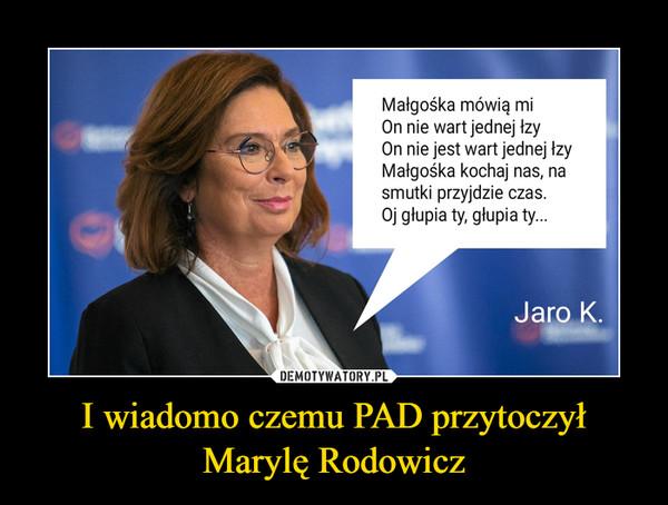 I wiadomo czemu PAD przytoczył Marylę Rodowicz –