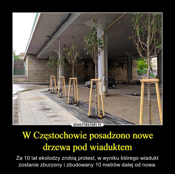 W Częstochowie posadzono nowe drzewa pod wiaduktem – Za 10 lat ekolodzy zrobią protest, w wyniku którego wiadukt zostanie zburzony i zbudowany 10 metrów dalej od nowa.