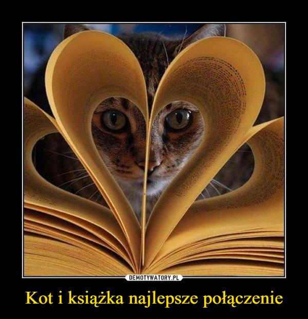 Kot i książka najlepsze połączenie –