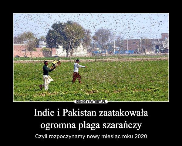 Indie i Pakistan zaatakowałaogromna plaga szarańczy – Czyli rozpoczynamy nowy miesiąc roku 2020