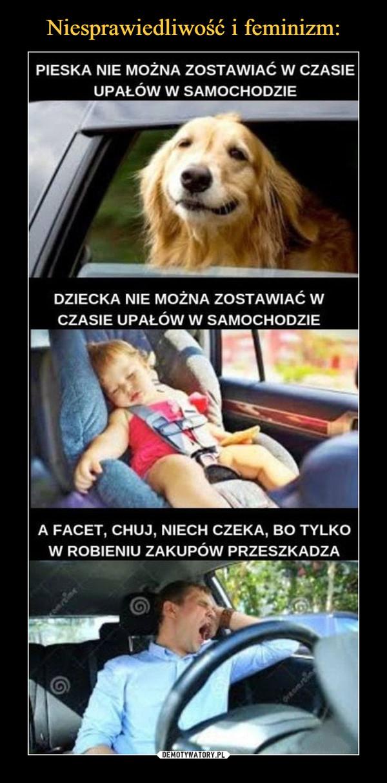 –  Pieska nie można zostawiać w czasie upałów  w samochodzie Dziecka nie można zostawiać w czasie upałów w samochodzie A facet, chuj, niech czeka, bo tylko w robieniu zakupów przeszkadza