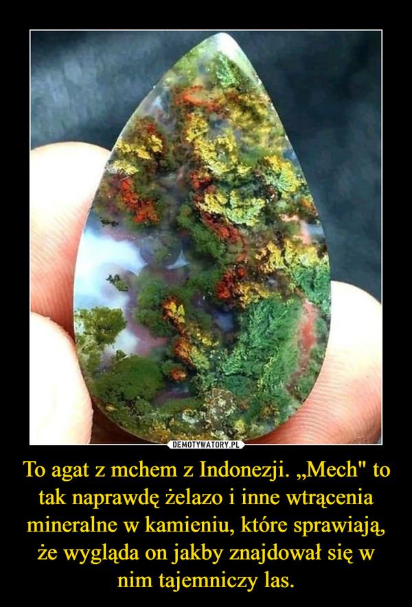 """To agat z mchem z Indonezji. """"Mech"""" to tak naprawdę żelazo i inne wtrącenia mineralne w kamieniu, które sprawiają, że wygląda on jakby znajdował się w nim tajemniczy las. –"""