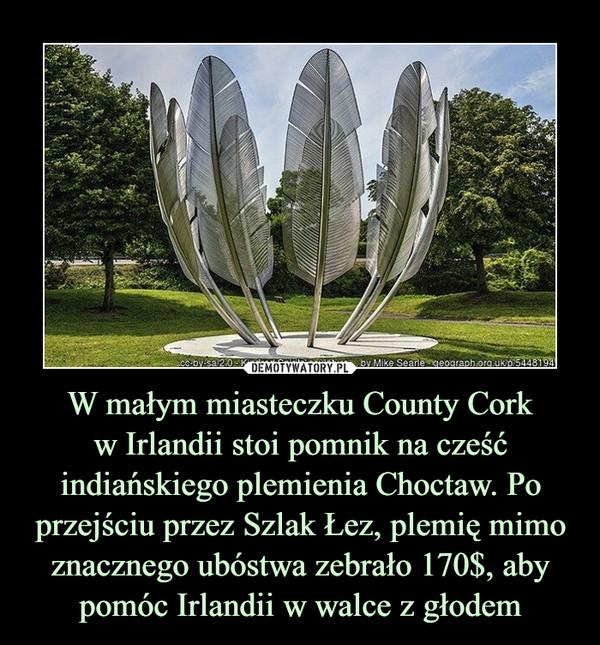 W małym miasteczku County Corkw Irlandii stoi pomnik na cześć indiańskiego plemienia Choctaw. Po przejściu przez Szlak Łez, plemię mimo znacznego ubóstwa zebrało 170$, aby pomóc Irlandii w walce z głodem –