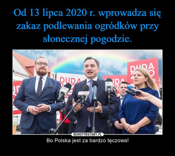 – Bo Polska jest za bardzo tęczowa!