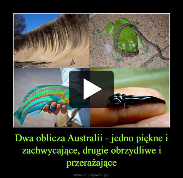 Dwa oblicza Australii - jedno piękne i zachwycające, drugie obrzydliwe i przerażające –
