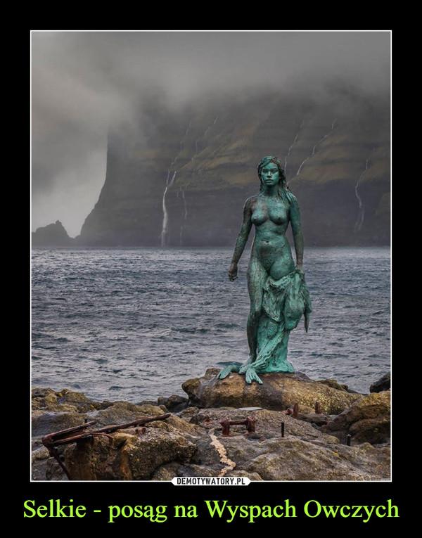 Selkie - posąg na Wyspach Owczych –