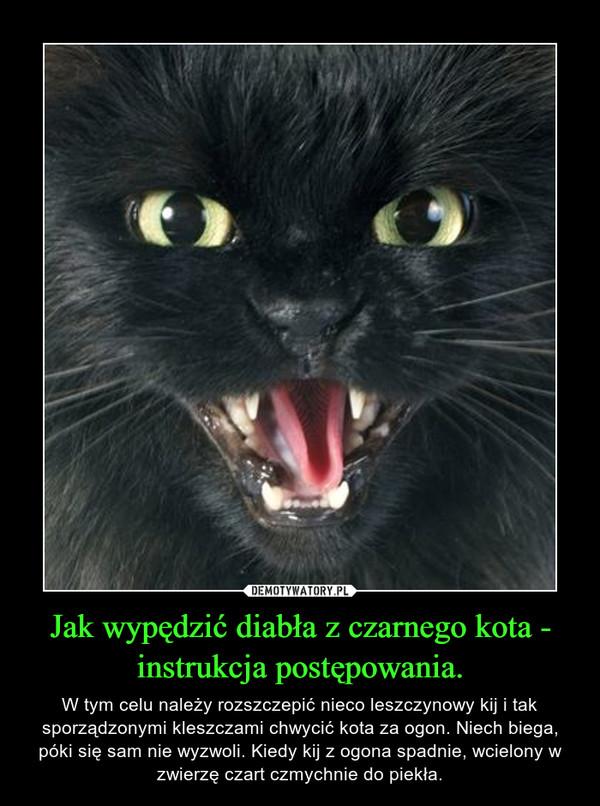 Jak wypędzić diabła z czarnego kota - instrukcja postępowania. – W tym celu należy rozszczepić nieco leszczynowy kij i tak sporządzonymi kleszczami chwycić kota za ogon. Niech biega, póki się sam nie wyzwoli. Kiedy kij z ogona spadnie, wcielony w zwierzę czart czmychnie do piekła.