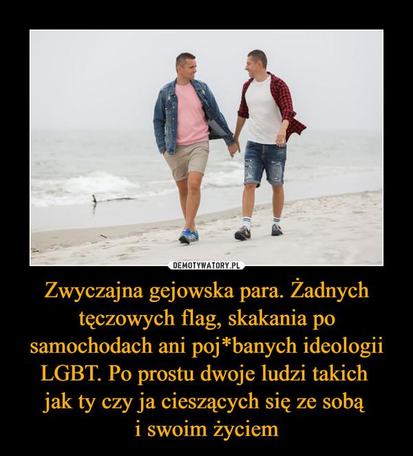 Zwyczajna gejowska para. Żadnych tęczowych flag, skakania po samochodach ani poj*banych ideologii LGBT. Po prostu dwoje ludzi takich jak ty czy ja cieszących się ze sobą i swoim życiem –