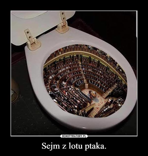 Sejm z lotu ptaka. –