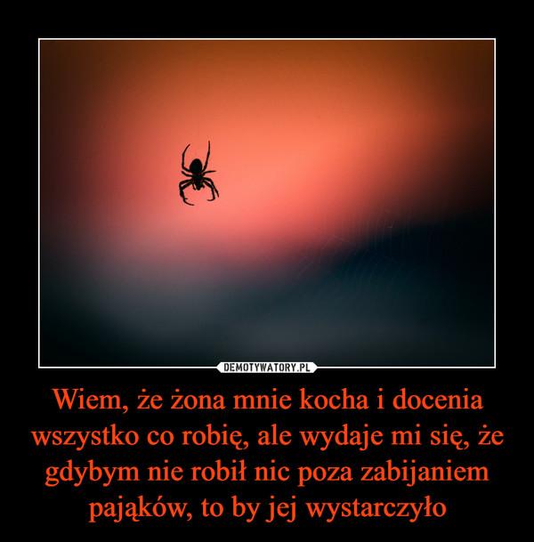 Wiem, że żona mnie kocha i docenia wszystko co robię, ale wydaje mi się, że gdybym nie robił nic poza zabijaniem pająków, to by jej wystarczyło –