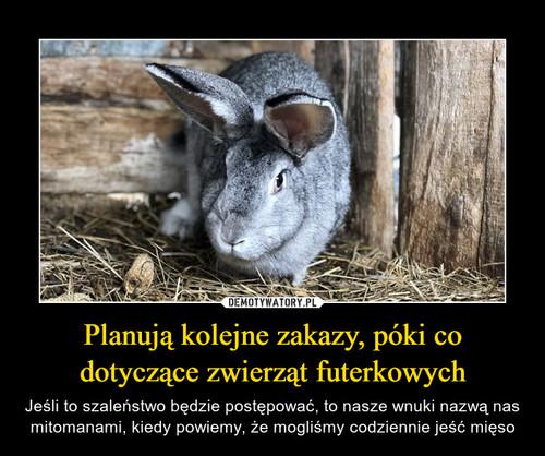 Planują kolejne zakazy, póki co dotyczące zwierząt futerkowych