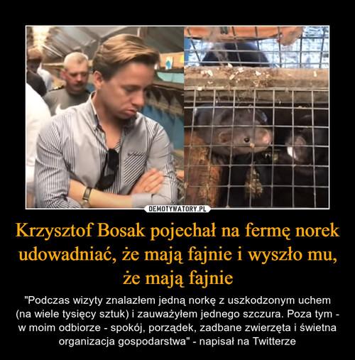 Krzysztof Bosak pojechał na fermę norek udowadniać, że mają fajnie i wyszło mu, że mają fajnie