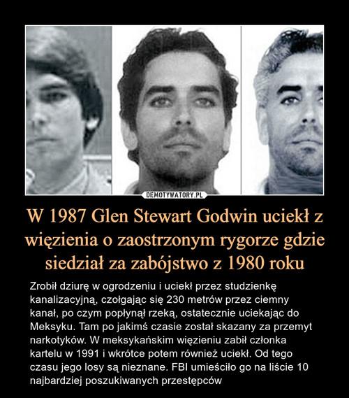 W 1987 Glen Stewart Godwin uciekł z więzienia o zaostrzonym rygorze gdzie siedział za zabójstwo z 1980 roku