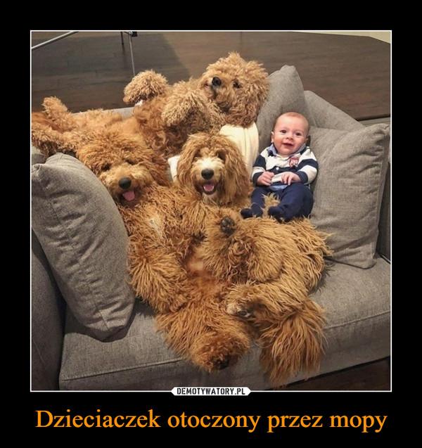 Dzieciaczek otoczony przez mopy –