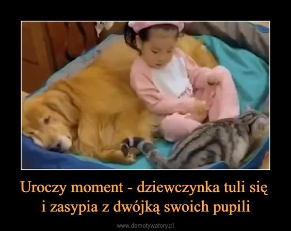 Uroczy moment - dziewczynka tuli się i zasypia z dwójką swoich pupili –
