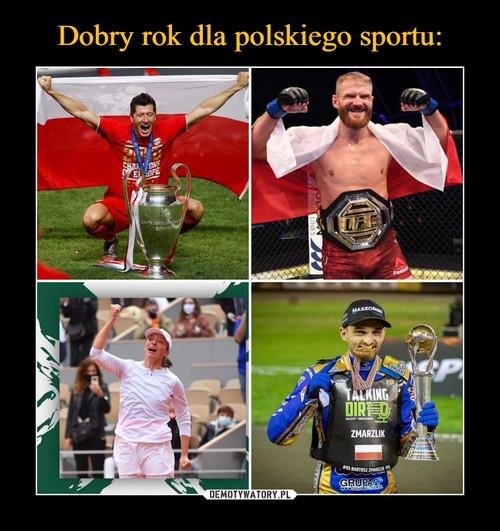 Dobry rok dla polskiego sportu: