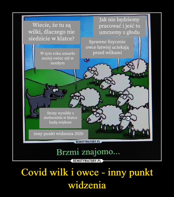 Covid wilk i owce - inny punkt widzenia –
