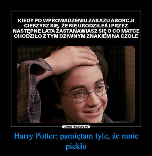 Harry Potter: pamiętam tyle, że mnie piekło