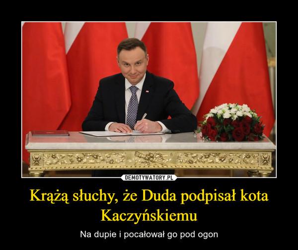 Krążą słuchy, że Duda podpisał kota Kaczyńskiemu – Na dupie i pocałował go pod ogon