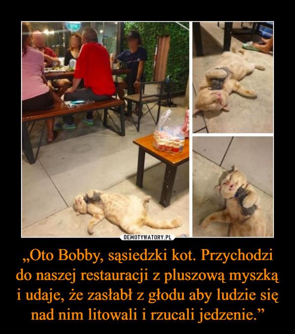"""""""Oto Bobby, sąsiedzki kot. Przychodzi do naszej restauracji z pluszową myszką i udaje, że zasłabł z głodu aby ludzie się nad nim litowali i rzucali jedzenie."""" –"""