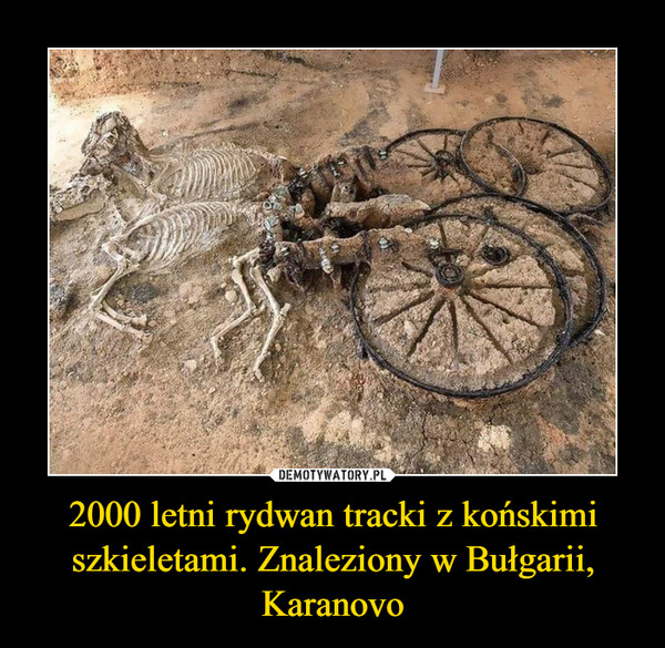 [Obrazek: 1604675313_o1qmkm_600.jpg]