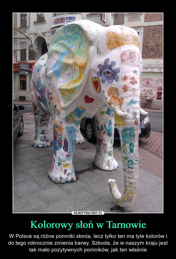 Kolorowy słoń w Tarnowie – W Polsce są różne pomniki słonia, lecz tylko ten ma tyle kolorów i do tego rokrocznie zmienia barwy. Szkoda, że w naszym kraju jest tak mało pozytywnych pomników, jak ten właśnie
