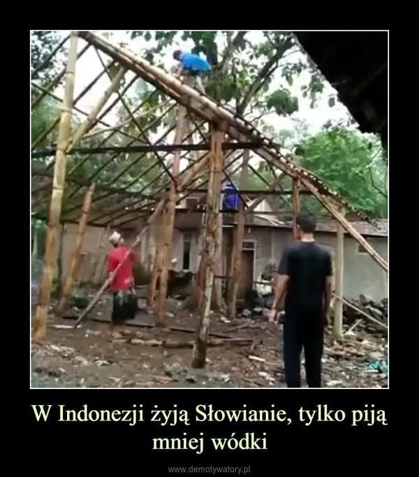 W Indonezji żyją Słowianie, tylko piją mniej wódki –