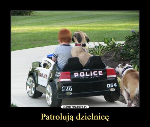 Patrolują dzielnicę