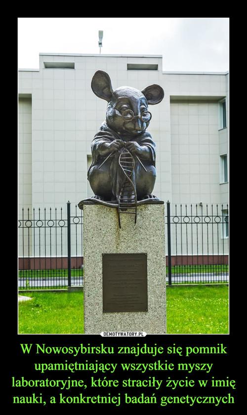 W Nowosybirsku znajduje się pomnik upamiętniający wszystkie myszy laboratoryjne, które straciły życie w imię nauki, a konkretniej badań genetycznych
