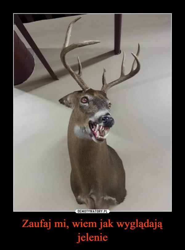 Zaufaj mi, wiem jak wyglądają jelenie –